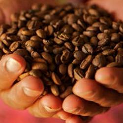 ¿Qué esconde tu taza de café?