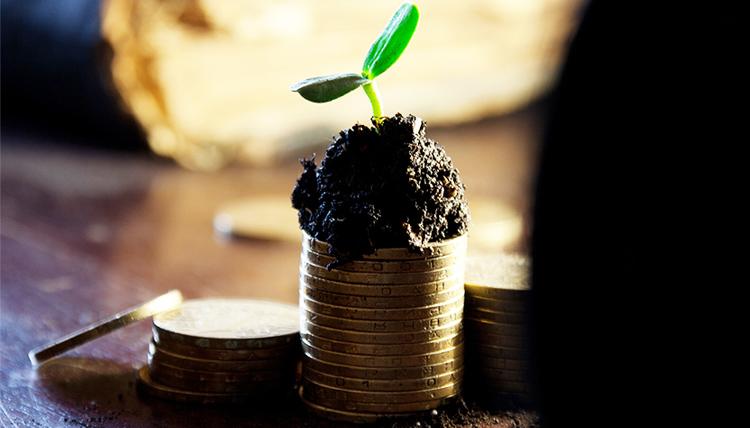 felicidad-dinero-solidaridad