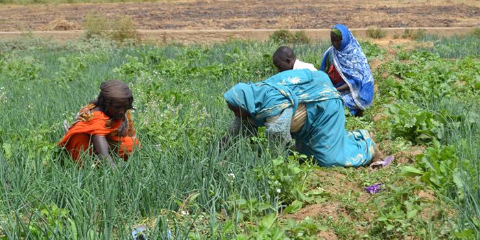 refugiados-acnur-sudan